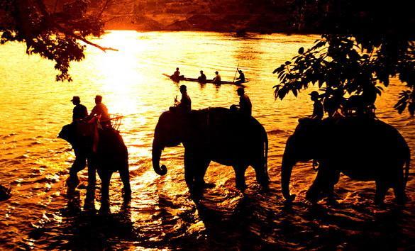 Buôn Ma Thuột không chỉ hút du khách với những trải nghiệm thú vị như cưỡi voi, tham quan vườn quốc gia, tìm hiểu bản sắc của các làng bản. Nơi đây còn có không khí mát lạnh, ly cà phê thơm lừng, những ngọn đèn rực rỡ ở khu vực ngã 6 trung tâm thành phố. Ảnh: Vietfieldtravel.
