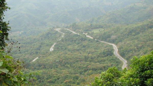 Con đường nhỏ xuyên giữa rừng già. (Nguồn: Wanderlust Tips)