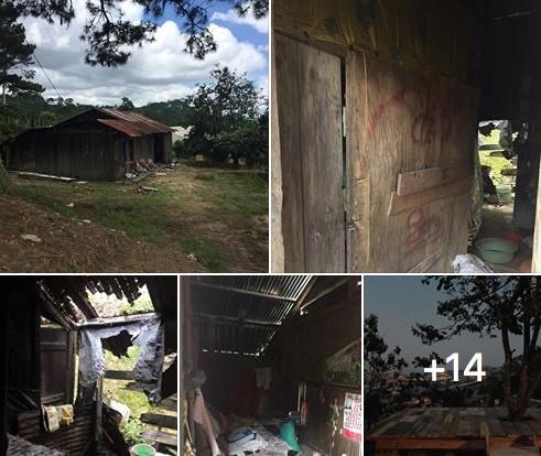 Căn nhà dột nát ,bị bỏ hoang lúc đầu. Ảnh chụp màn hình.