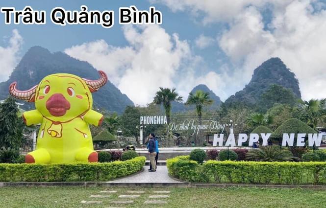 Trâu tại Quảng Bình trông giống như đang cosplay Pikachu?