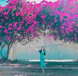 Thêm một bức ảnh check-in hoa giấy siêu đẹp của các bạn trẻ tại Vũng Tàu.