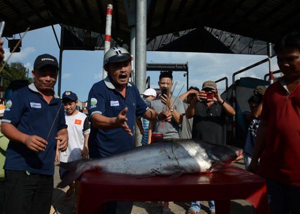 Người dân mang cá tra