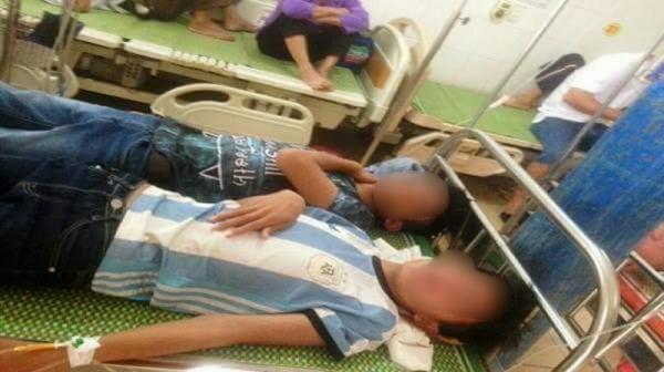 Người dân và học sinh bị ong rừng tấn công phải nhập viện cấp cứu.