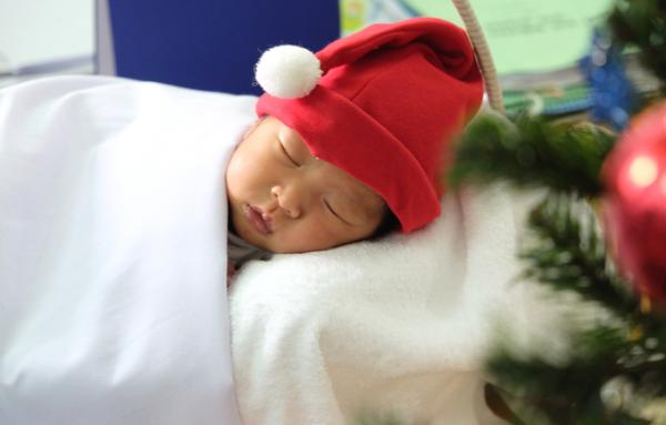 Mọi người tự tay may mũ, kết ủng Noel màu đỏ, trang trí cây thông để con có những bức ảnh đầu đời.