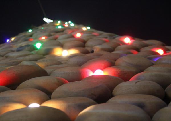 Hệ thống đèn nháy, bóng màu được trang trí để cây thông thêm lung linh trong đêm tối.
