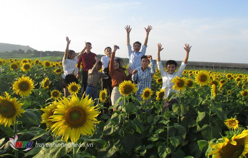 Cảm giác thật tuyệt khi được hoà mình giữa cánh đồng hoa vô tận.