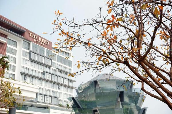 Tiền sảnh khách sạn The Reed vào thu đẹp và lãng mạn như phim Hàn. (Nguồn: @thereedhotel)