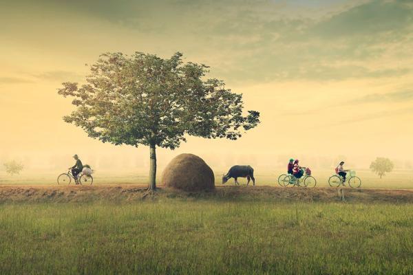 Không ngờ Việt Nam quê mình cũng có nơi đẹp đến thế.