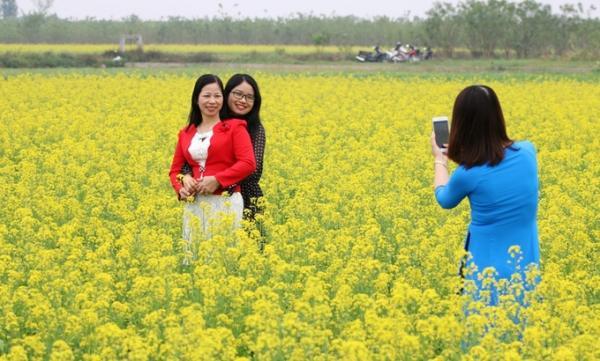 Chủ cánh đồng hoa cải thu mỗi người vào chụp hình 10.000 đồng, trẻ nhỏ được miễn.