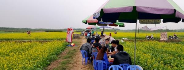 Hàng ăn, quán nước di động cũng mọc lên dãy dài bên cạnh cánh đồng hoa cải.