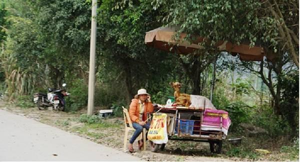 Rất nhiều các điểm bày bán thịt dê tươi sống dọc tuyến đường Tràng An – Bái Đính