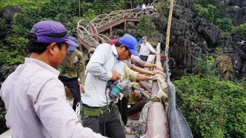 Công ty du lịch Tràng An bắt đầu tháo dỡ công trình. Ảnh TTO