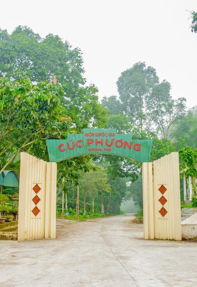 Vườn quốc gia Cúc Phương thu hút du khách bởi vẻ đẹp hoang sơ và kỳ vĩ của mình