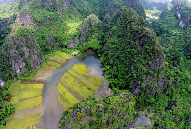 Mùa lúa chín ở Tam Cốc thực sự đặc biệt vì có sự hòa quyện của núi, của sông và những cánh đồng óng vàng.