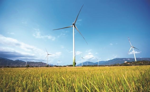 Dự án điện gió Trung Nam giai đoạn 2 tại Ninh Thuận.