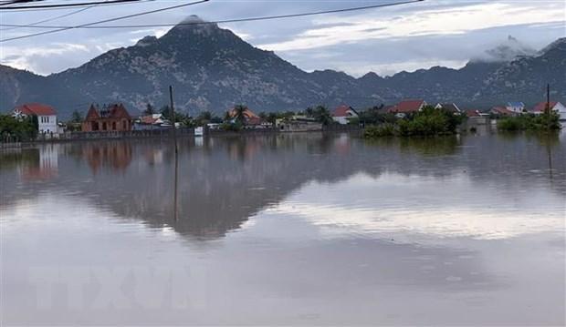 Cánh đồng ở xã Phước Nam, huyện Thuận Nam ngập sâu trong nước. (Ảnh: Công Thử/TTXVN)