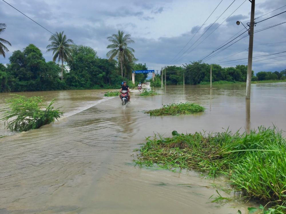 Sáng nay tại tuyến đường dẫn vào thôn Từ Tâm, xã Phước Hải, huyện Ninh Phước bị ngập cục bộ. (Ảnh: Quốc Hải).