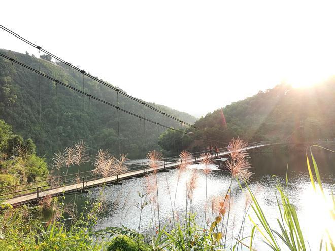 Non nước hữu tình ở Hồ Ly. (Ảnh: danviet.vn)