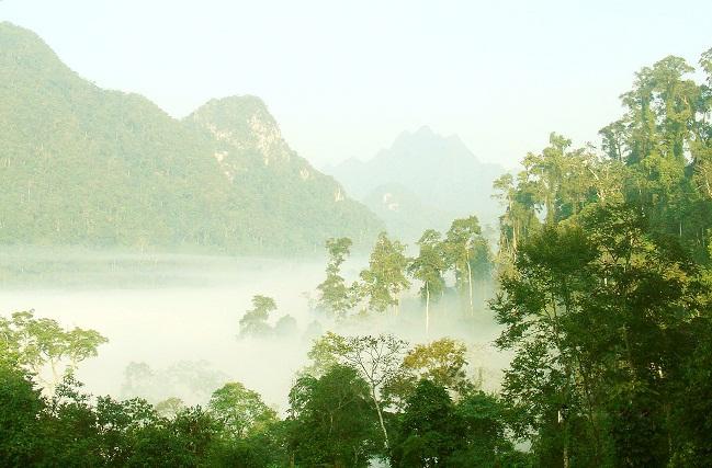 Bồng bềnh mây trời, vườn Quốc gia Xuân Sơn. (Ảnh: blogcamxuc.net)
