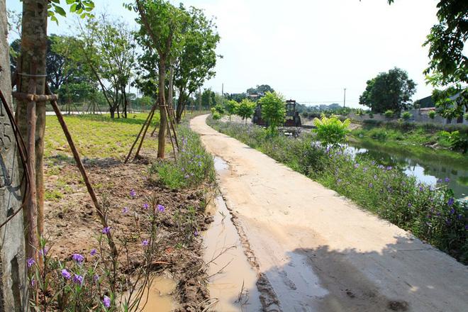 Khu an táng nhìn thẳng ra một con kênh nhỏ của địa phương.