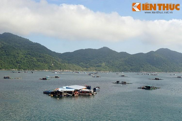 Vịnh có diện tích 16,4 km² mặt nước, nằm tiếp giáp với biển Đại Lãnh thuộc vịnh Vân Phong, tỉnh Khánh Hòa, được ba dãy núi cao che chắn là Đèo Cả, Đá Bia và Hòn Bà từ ba phía Bắc, Đông và Tây.