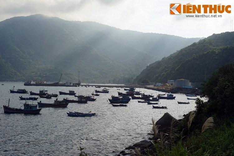 Trong lòng vịnh có nhiều loại tôm cá trú ngụ, là cơ sở cho sự phát triển của nghề nuôi trồng, đánh bắt hải sản ở nơi đây,