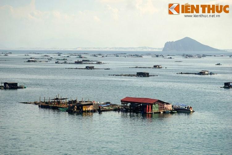 Sự hiện diện với mật độ lớn của các nhà bè nuôi cá làm nên nét đặc trưng của vịnh Vũng Rô so với so với các vịnh biển khác ở Việt Nam.