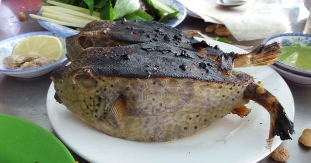 Loài cá này có tên là cá bò hòm vì có bản mặt giống con bò, trong khi thân có hình vuông vức như chiếc hòm. (Nguồn Blogspot)