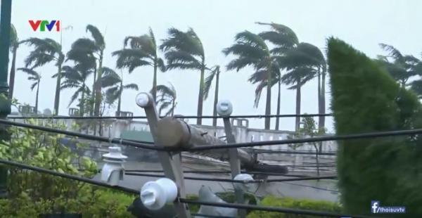 Nhiều cột điện bị đổ do mưa bão.