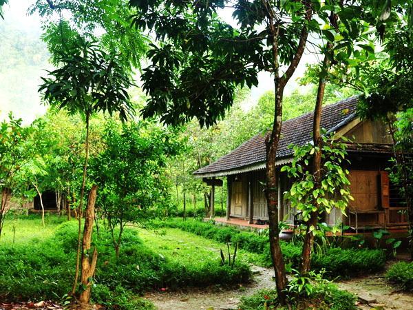 Chày Lập Homestay gần gũi với thiên nhiên. (Nguồn: nguoiquangnam.vn)