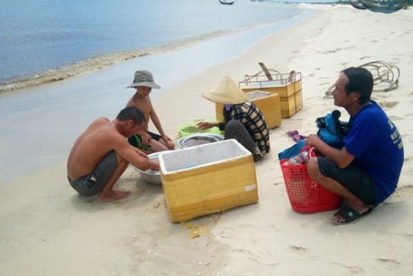 Nhiều em nhỏ ở Hải Ninh đi biển cùng bố
