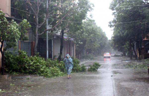 Những con đường bị tàn phá vì bão.
