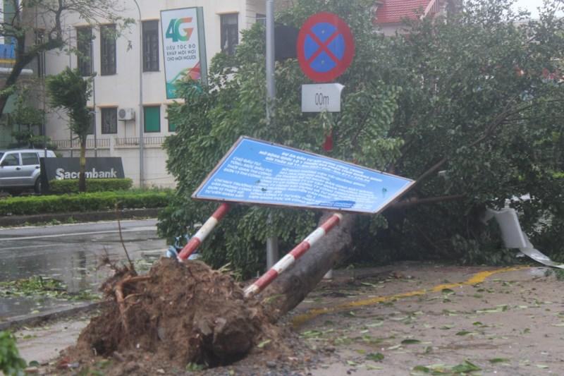 Nhiều biển báo bị quật gãy.Ảnh: Nguyễn Do