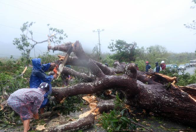 Nhân dân Tuyên Hoá giải phóng ách tắc giao thông sau bão số 10.