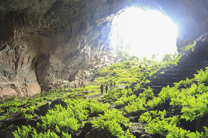 Vẻ đẹp mê hồn của hang Pygmy.