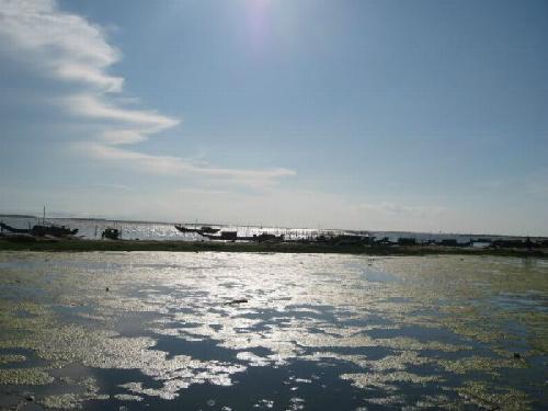 Phá Hạc Hải là nguồn cung cấp thủy hải sản cho Quảng Bình. Ảnh: blodspot