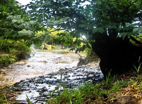 Đi dọc suối bạn sẽ ngửi thấy mùi lưu huỳnh đặc trưng. Ảnh: tuoitre.