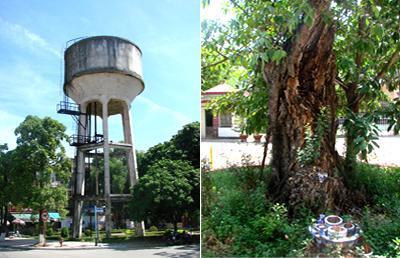Tháp nước, cây Đa chùa Ông
