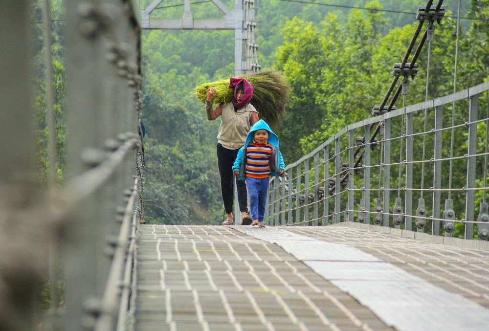 Mỗi lần đi săn, trẻ em trong vùng có thể đi lấy từ 5 đến 7kg, kiếm được khoảng 30.000 đồng.