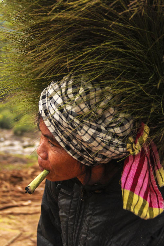 Không chỉ những đứa trẻ, người lớn cũng vào rừng hái đót về bán kiếm thêm thu nhập