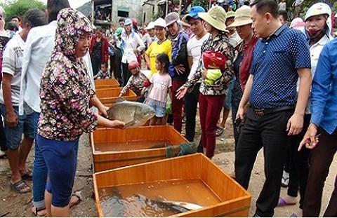 Hội thi cá trắm sông Son hằng năm thu hút rất nhiều du khách đến tham quan. (Ảnh PN-KB)