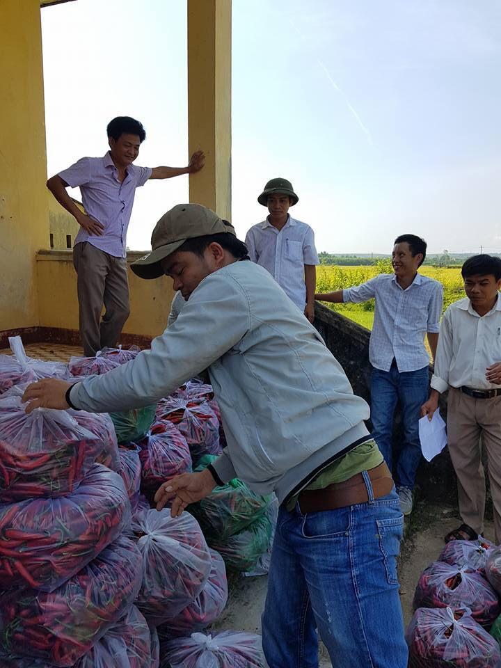 Các đơn vị tích cực thu mua ớt cho nông dân