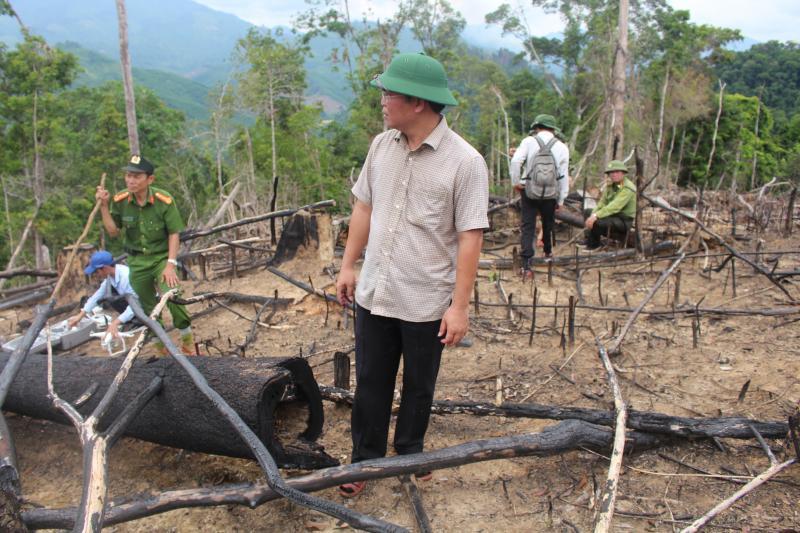 Đoàn khảo sát của chính quyền tỉnh Quảng Nam tại hiện trường tan hoang của khu rừng phòng hộ bị tàn phá nhiều năm nay tại xã Tiên Lãnh, huyện Tiên Phước, Quảng Nam