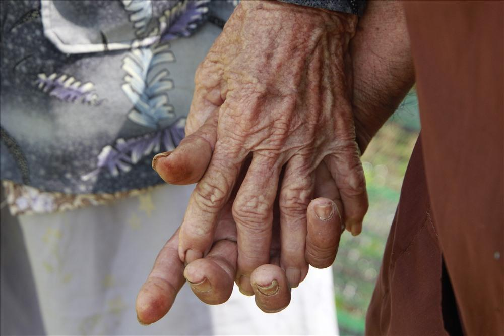 Hàng ngày, ông bà vẫn nắm tay nhau đi thăm nom vườn rau mà hai người đã cùng nhau vun xới.