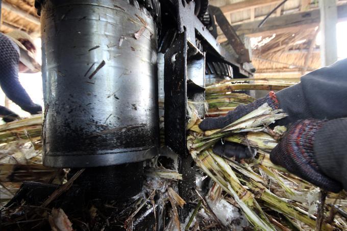 Cây mía được người dân cho vào máy ép lấy nước, sau đó lọc bỏ cặn bã để nấu.