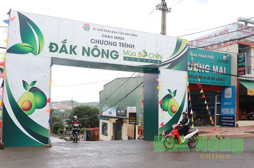 Cổng chào trên đường 36m, chào đón khách đến với đảo nổi nơi diễn ra các sự kiện  lớn của chương trình
