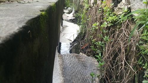 Rồi chảy vào con mương dẫn nước gần nhà văn hóa khu Bí Giàng ra đồng ruộng.