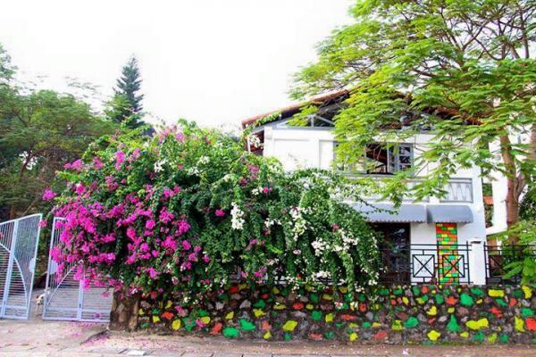 Không gian xinh xắn, nhiều sắc màu tại homestay Banana and Rose (Ảnh: Banana and Rose)