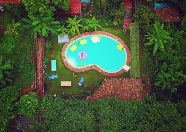 Bể bơi nhỏ xinh giữa một không gian xanh yên bình, thoáng đãng (Nguồn: Agoda)
