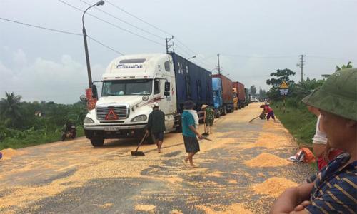 Dân ồ ạt ra hôi ngô ở Quảng Ninh.